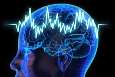 https://piramideinformativa.com/wp-content/uploads/2014/09/cerebro.jpg